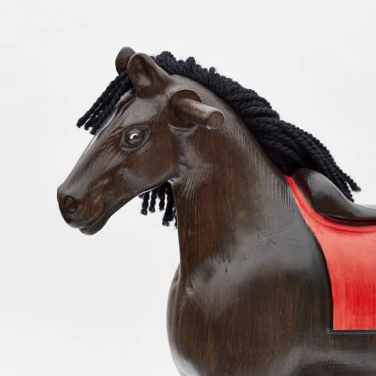Detail hlavy houpacího koně Čenda 39 vraníka